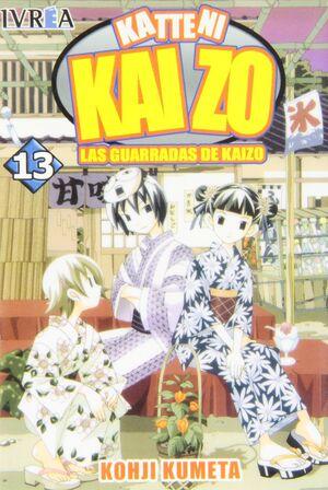 KAIZO Nº 13